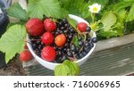 a bowl of fresh strawberries... | Shutterstock . vector #716006965