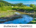 a pond surrounded by green... | Shutterstock . vector #716009311