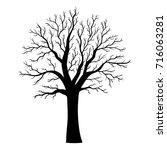 leafless tree silhouette... | Shutterstock . vector #716063281