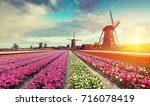 landscape with tulips ... | Shutterstock . vector #716078419