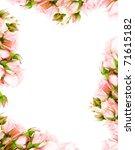 Fresh Pink Roses Frame Border...