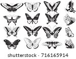 black and white realistic... | Shutterstock . vector #716165914