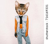 art collage cat  in fashionable ... | Shutterstock . vector #716169331