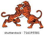 tigers  fighting each other... | Shutterstock .eps vector #716195581