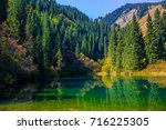 nature  landscape  forest... | Shutterstock . vector #716225305