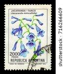 Small photo of ARGENTINA - CIRCA 1983: a stamp printed in the Argentina shows blue jacaranda, jacaranda mimosifolia is a sub-tropical tree, series flowers, circa 1983