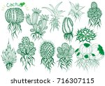collection hand draw cactus | Shutterstock .eps vector #716307115