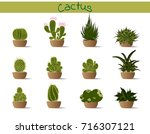 collection  cactus in a pot | Shutterstock .eps vector #716307121