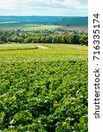 champagne vineyard  france. | Shutterstock . vector #716335174
