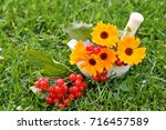 Small photo of Calendula, viburnum in mortal on green grass