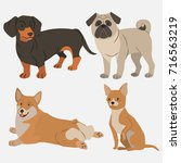 set of dogs | Shutterstock .eps vector #716563219