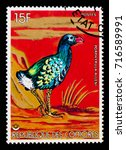 Small photo of MOSCOW, RUSSIA - SEPTEMBER 3, 2017: A stamp printed in Comoros shows Allen's Gallinule (Porphyrio alleni), Birds serie, circa 1978