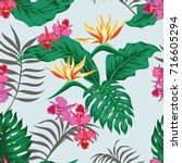tropical seamless pattern with... | Shutterstock .eps vector #716605294