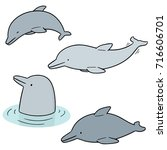 vector set of dolphin | Shutterstock .eps vector #716606701