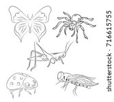 set of  vector insects. hand... | Shutterstock .eps vector #716615755