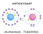 free radical and antioxidant... | Shutterstock .eps vector #716634361