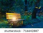 Stock photo flying fireflies 716642887