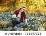 happy young woman gardener with ... | Shutterstock . vector #716647315