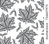 engraving seamless pattern of... | Shutterstock .eps vector #716647975