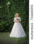 lovely young bride in wedding... | Shutterstock . vector #716660341