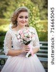 lovely young bride in wedding... | Shutterstock . vector #716665045