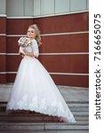 lovely young bride in wedding... | Shutterstock . vector #716665075