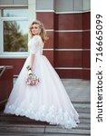 lovely young bride in wedding... | Shutterstock . vector #716665099