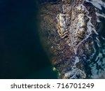 nile crocodile's head rises... | Shutterstock . vector #716701249