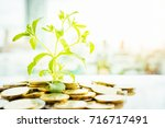 financial growth  plant on pile ... | Shutterstock . vector #716717491