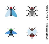 flat icon housefly set of... | Shutterstock .eps vector #716775307