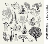 set with seaweed and coral.... | Shutterstock .eps vector #716778361