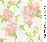 watercolor. flowers and buds of ... | Shutterstock . vector #716802511