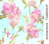 watercolor. flowers and buds of ... | Shutterstock . vector #716802619