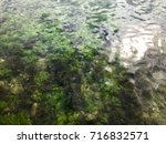 sea  background   Shutterstock . vector #716832571