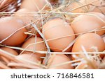 brown eggs in the straw close... | Shutterstock . vector #716846581
