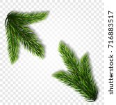 collection of fir branches. set ... | Shutterstock .eps vector #716883517
