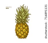 colored pineapple illustration. ... | Shutterstock .eps vector #716891131
