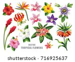 Stock vector tropical collection with exotic flowers and leaves vector design isolated elements on the white 716925637
