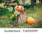 autumn helloween pumpkin | Shutterstock . vector #716933599