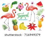 tropical collection for summer... | Shutterstock .eps vector #716949379