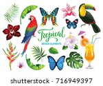 tropical collection for summer... | Shutterstock .eps vector #716949397