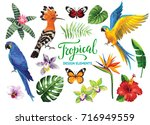 Stock vector tropical collection exotic flowers leaves birds and butterflies vector isolated elements on the 716949559