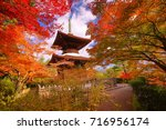 Small photo of Jojakko-ji Temple is a zen temple on the Arashiyama that coloful maple autumn offers to understanding what is Wabi-sabi(Sadness) style when in zen garden tower(pagoda).