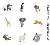 ostrich emu  crocodile  giraffe ... | Shutterstock .eps vector #717033961