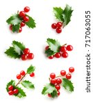 holly berry leaves christmas... | Shutterstock . vector #717063055