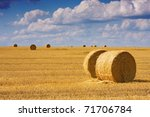 Big Round Bales Of Straw In The ...