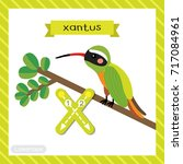 letter x lowercase cute... | Shutterstock .eps vector #717084961