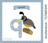 letter q lowercase cute... | Shutterstock .eps vector #717085345