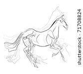 horse | Shutterstock .eps vector #71708824