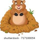 cartoon groundhog looking out...   Shutterstock .eps vector #717100054